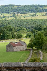 Yorkshire dales fields are crisscrossed with stone fences and farms